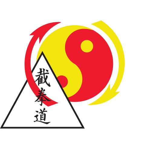 American Dragon Martial Arts Academy